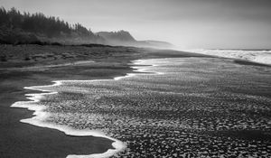 Preview wallpaper coast, sea, waves, landscape, black and white