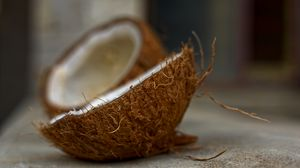Preview wallpaper coconut, nut, tropical