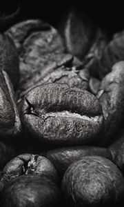 Preview wallpaper coffee beans, beans, coffee, black and white