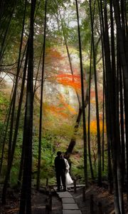 Preview wallpaper couple, kiss, love, path, forest, nature