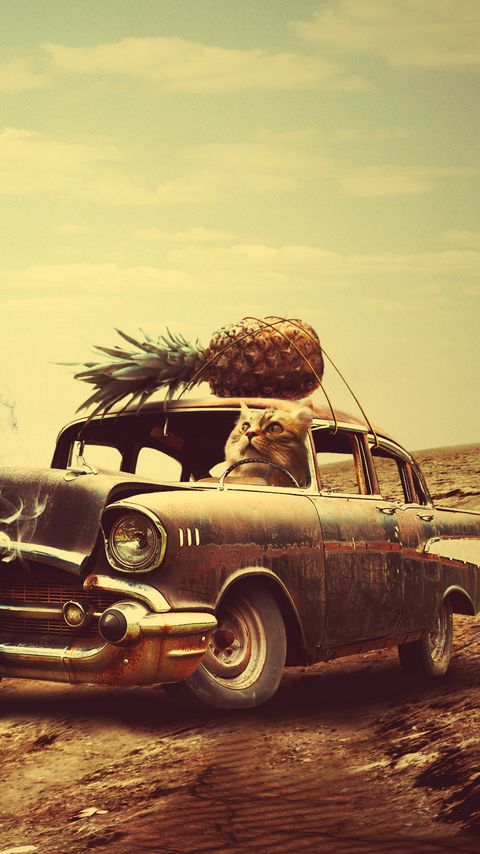 480x854 Wallpaper creative, hand, surrealism, car, clock, pineapple, cat