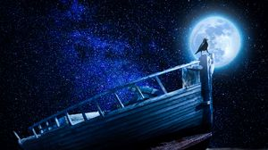 Preview wallpaper crow, starry sky, boat, moon, pebble