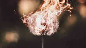 Preview wallpaper dandelion, fire, flame, fluff