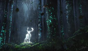 Preview wallpaper deer, forest, night, glow, art, grass, trees, leaves