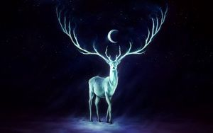Preview wallpaper deer, horns, moon, stars