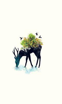 240x400 Wallpaper deer, minimalism, vector, background, nature