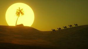 Preview wallpaper desert, sun, palm tree, hill, art