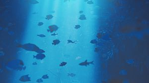 Preview wallpaper diving, under water, ray of light, depth, fish, bottom