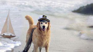 Preview wallpaper dog, cap, network, sea, ship