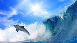 Preview wallpaper dolphin, sunshine, shine, jump, sea