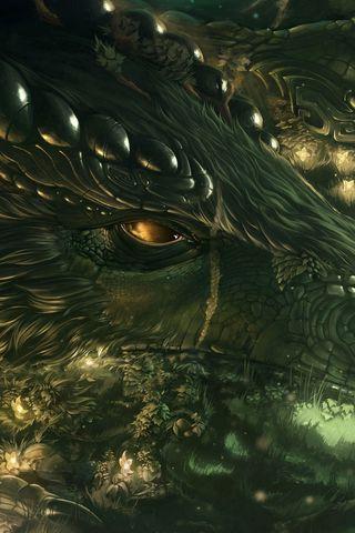 320x480 Wallpaper dragon, girl, forest, art