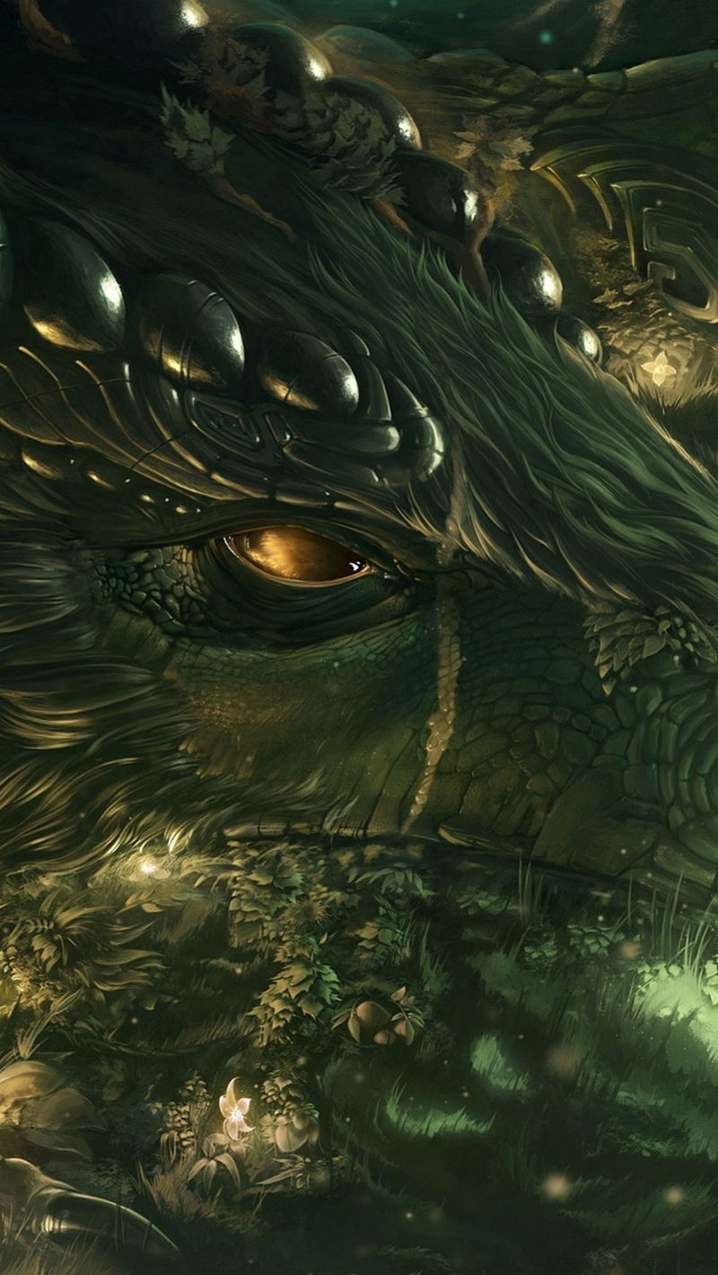 800x1420 Wallpaper dragon, girl, forest, art