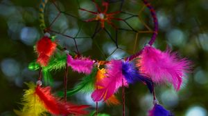 Preview wallpaper dreamcatcher, mascot, colorful, feathers