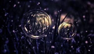 Preview wallpaper drops, bubbles, grass