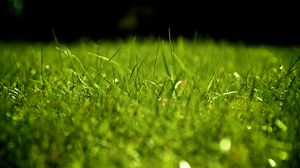 Preview wallpaper drops, dew, grass, surface