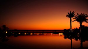 Preview wallpaper dubai, night, evening, sunset, orange, black, palm trees, water, light, reflection
