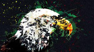 Preview wallpaper eagle, art, beak