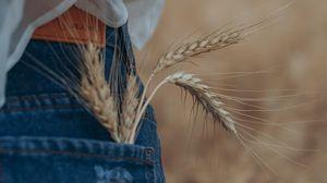 Preview wallpaper ears, pocket, jeans, girl