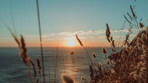 Preview wallpaper ears, sun, sea, horizon