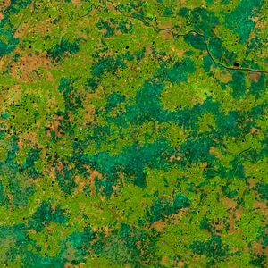 Preview wallpaper earth, spots, green, abstraction