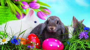 Preview wallpaper easter, eggs, colorful, rabbits, grass