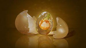 Preview wallpaper egg, shell, shape, light
