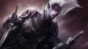 Preview wallpaper elf, swords, armor, warrior, eyes