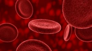 Preview wallpaper erythrocyte, plasma, blood, composition