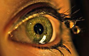 Preview wallpaper eye, drops, macro, eyelashes