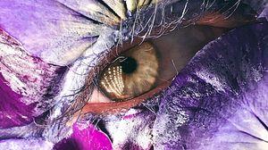 Preview wallpaper eye, petals, makeup, creative, macro