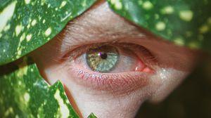 Preview wallpaper eye, pupil, macro, leaves