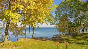 Preview wallpaper fall, canadian shore, meadow, benches, landscape