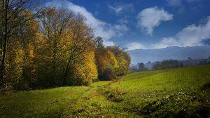 Preview wallpaper fall, field, grass, sky, trees