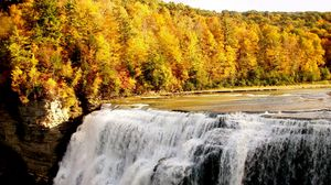 Preview wallpaper fall, waterfall, forest, nature