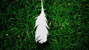 Preview wallpaper feather, grass, green, white, lightness