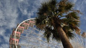 Preview wallpaper ferris wheel, attraction, palm trees, bottom view