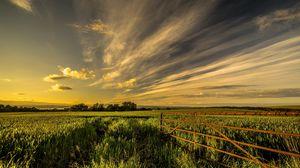 Preview wallpaper field, grass, fence, sky, summer