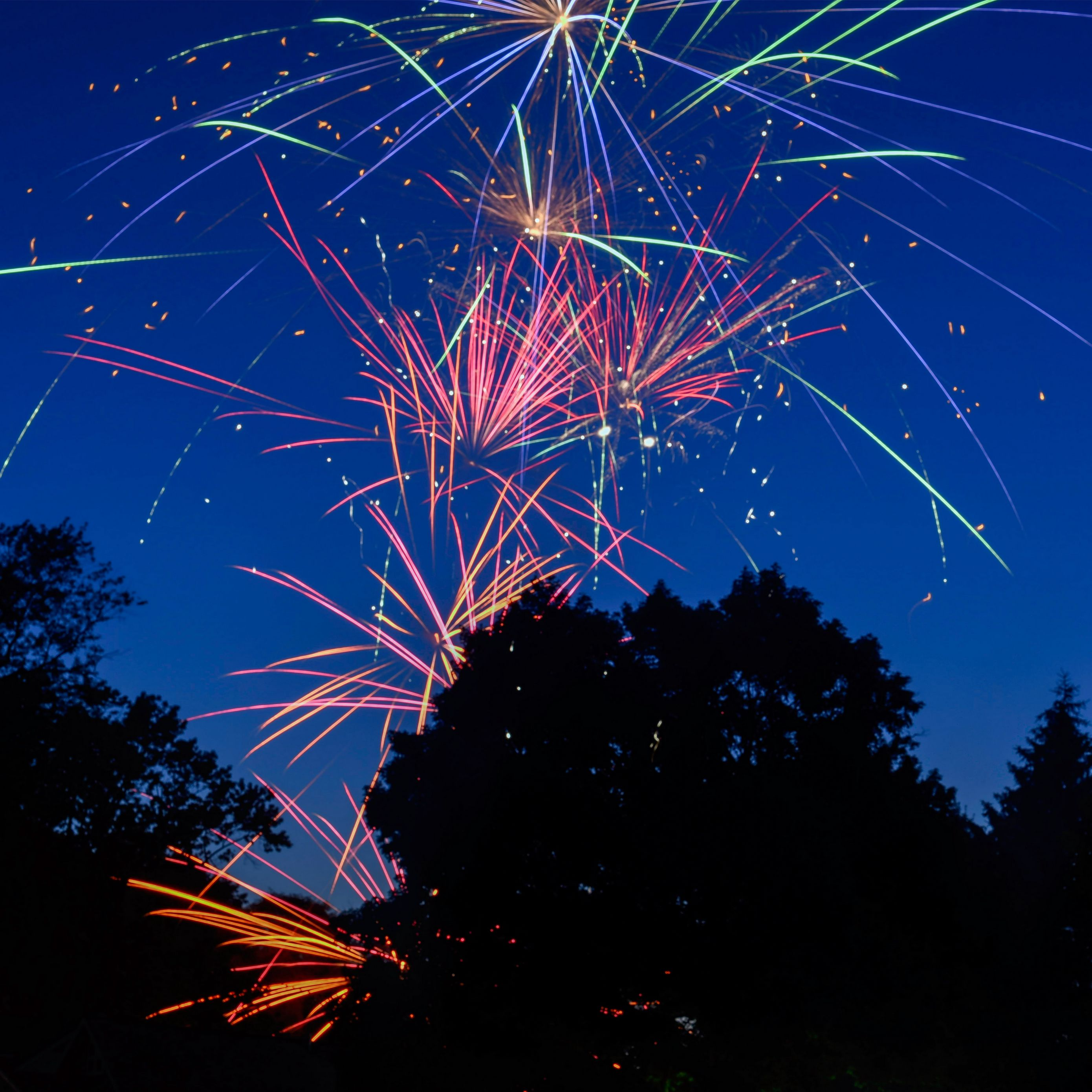 2780x2780 Wallpaper fireworks, salute, holiday, sparks, trees