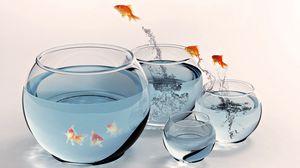 Preview wallpaper fish, aquarium, gold, splashing, jumping
