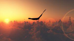 Preview wallpaper flight, clouds, sun, birds