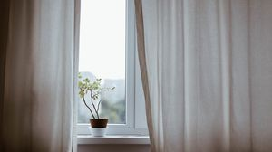 Preview wallpaper flower, pot, window, curtains, minimalism
