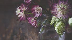 Preview wallpaper flowers, petals, bouquet, vase, aesthetics