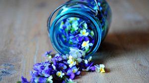 Preview wallpaper flowers, pot, glass, spilled