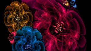 Preview wallpaper flowers, veil, background, dark