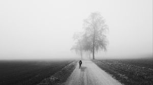 Preview wallpaper fog, alone, bw, silhouette, road, trees