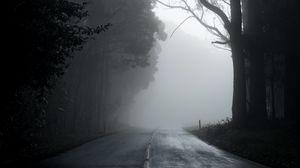 Preview wallpaper fog, road, trees, asphalt, emptiness