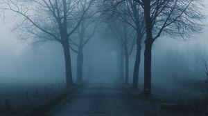 Preview wallpaper fog, trees, road, haze, nature