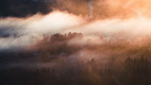 Preview wallpaper fog, trees, village, aerial view