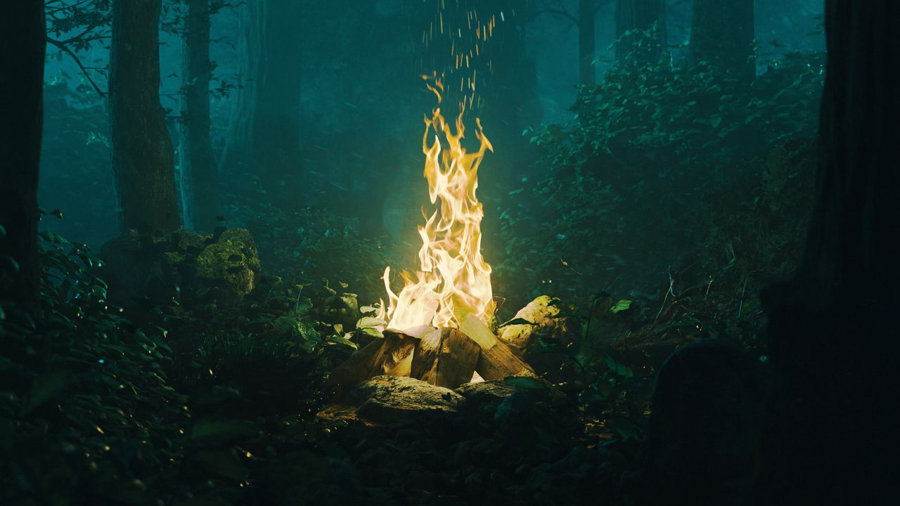 Wallpaperforest,bonfire,fire,light,dark高清壁纸免费下载