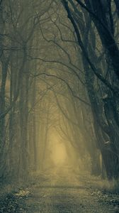 Preview wallpaper forest, road, fog, trees, autumn, gloomy, atmosphere